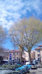TreeTowerSt.J.deM